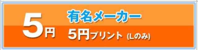 140129 netprint sale 03