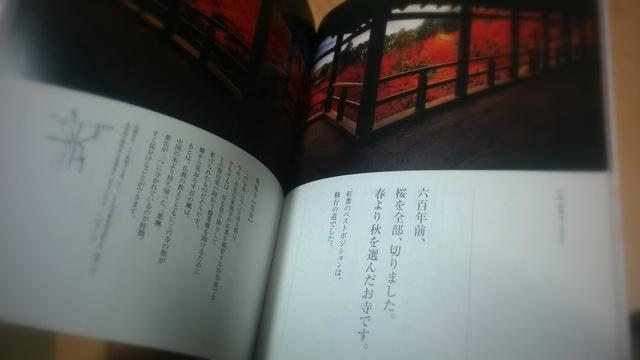 140306 soda kyoto iko 02