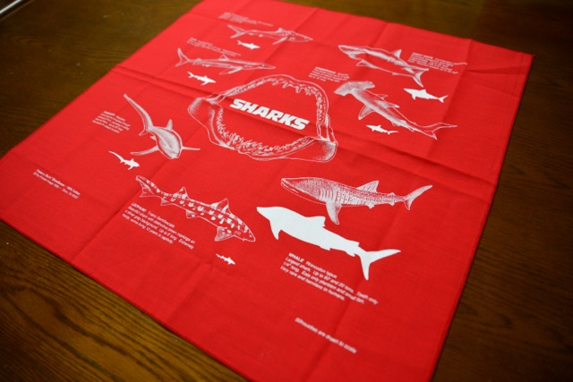 140404 sharks 07