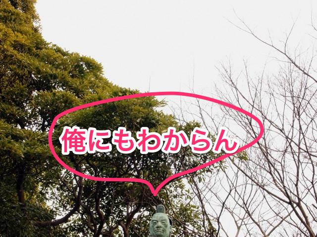 140411 hikonejyo 10