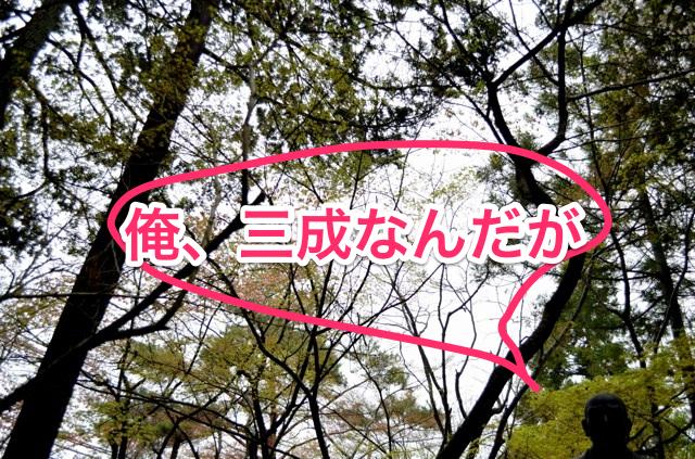 140414_sawayamajyo_17