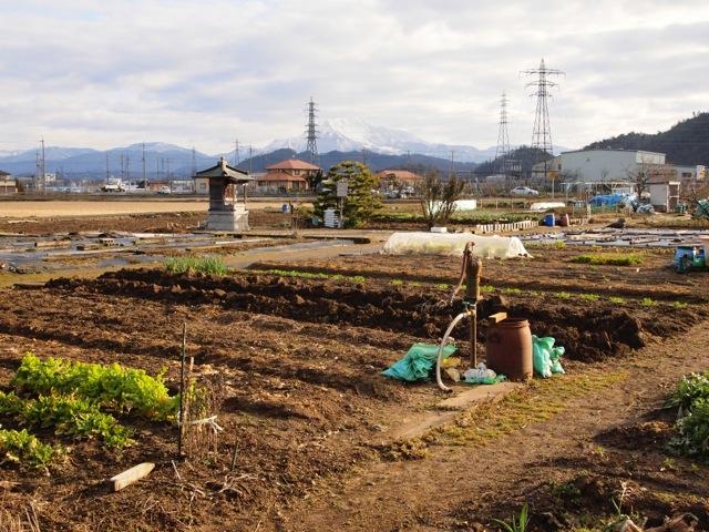 140415 yoshitsugu kubitsuka 04